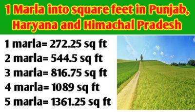 1 Marla into square feet in Punjab, Haryana, Himachal Pradesh