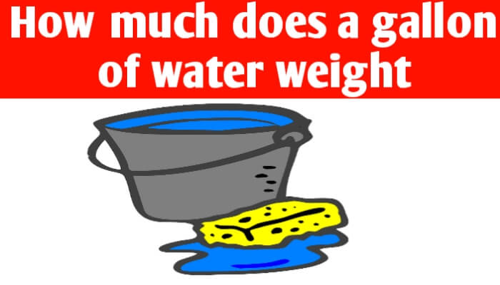 How much does a gallon of water weight