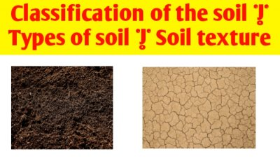Classification of the soil | Types of soil | Soil texture